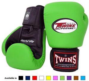 best boxing gloves under 100 dollar