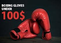 BOXING GLOVES UNDER 100$