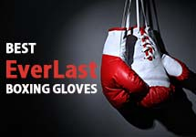 Top Ten Everlast Boxing Gloves