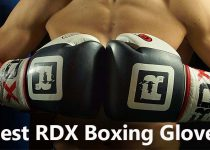 Best RDX Boxing Gloves